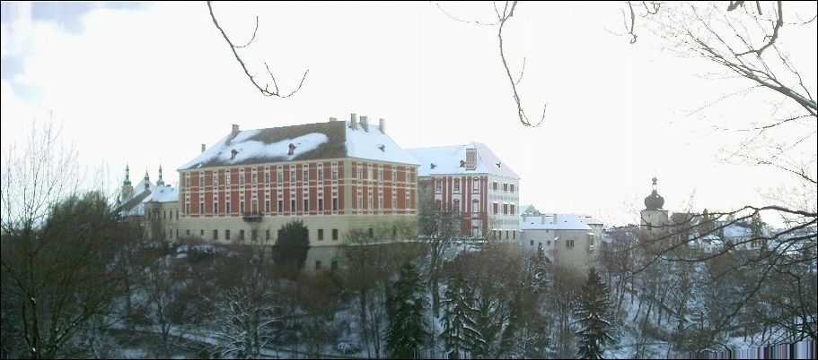Castle - winter panorama